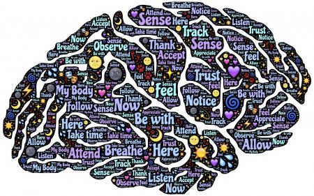 楽器練習で脳が発達。いい効果と変化【音楽の脳への影響】